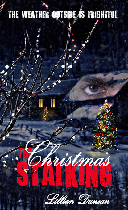 TheChristmasStalking_h11248_680C