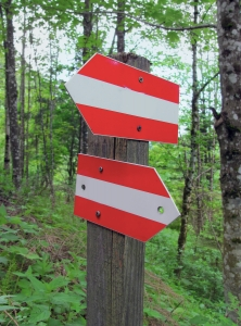 directionsigns