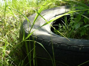 39917_tire_in_the_grass