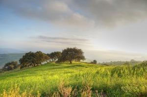 landscape-1590888_640
