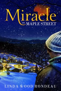 cover image for Miracle on Main Street