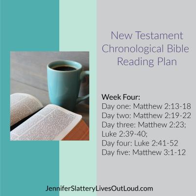 Bible reading plan week 4 image
