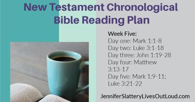 Bible reading plan image