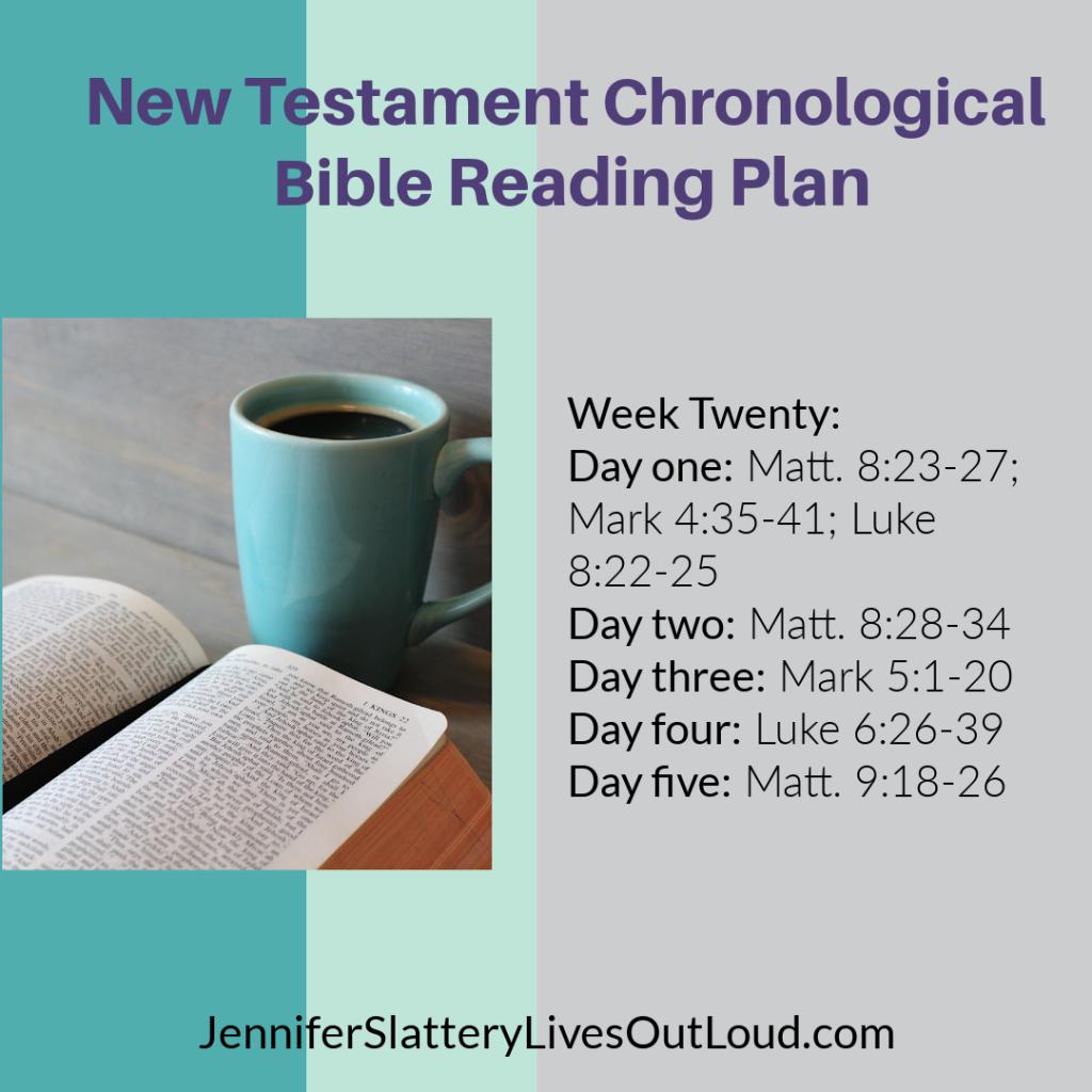 Bible reading plan image week 20